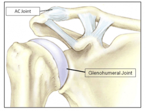 AC Joint Injury