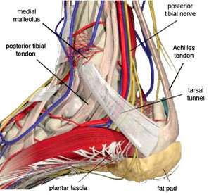 The best treatments for tarsal tunnel syndrome
